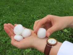 Telecommuting Saves Company After Hail Storm