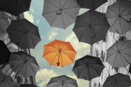 Four Ways to Stand Out from the Competition