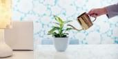 Environmental Savings from Telecommuting