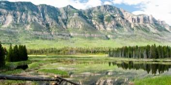 7 Great Flexible Jobs in Wyoming, Hiring Now!