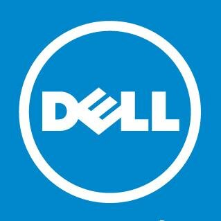 dell logo solid color