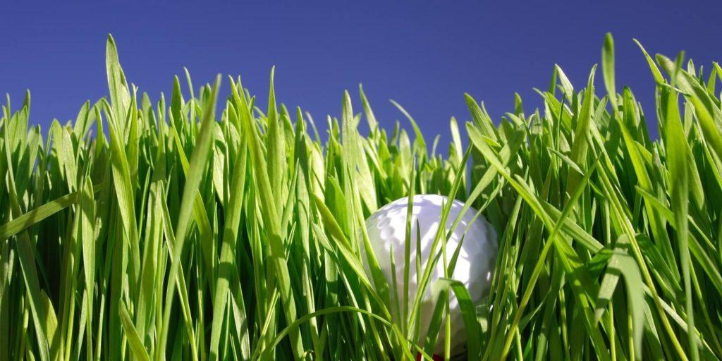 Looking in the grass for a hidden job market.