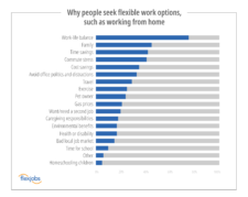 why people seek flexible work