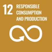 UN's Sustainable Development Goals Initiative & Remote Work 16
