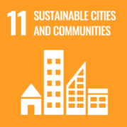 UN's Sustainable Development Goals Initiative & Remote Work 14