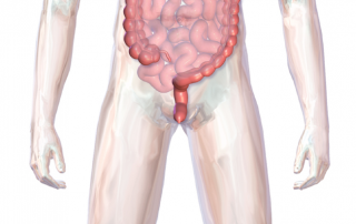 IBD Treatment for UC, Ulcerative Colitis, Crohn's Disease