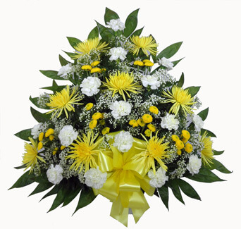 Basket E: Yellow Spiders, Carnations