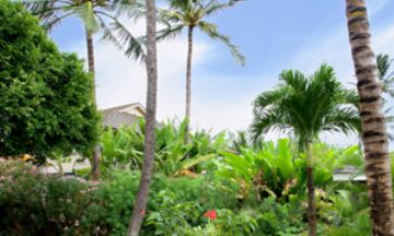 vacation rental 50501050845Hawaii