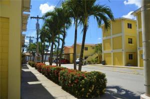 211 SW San Pedro Sula, 16B,