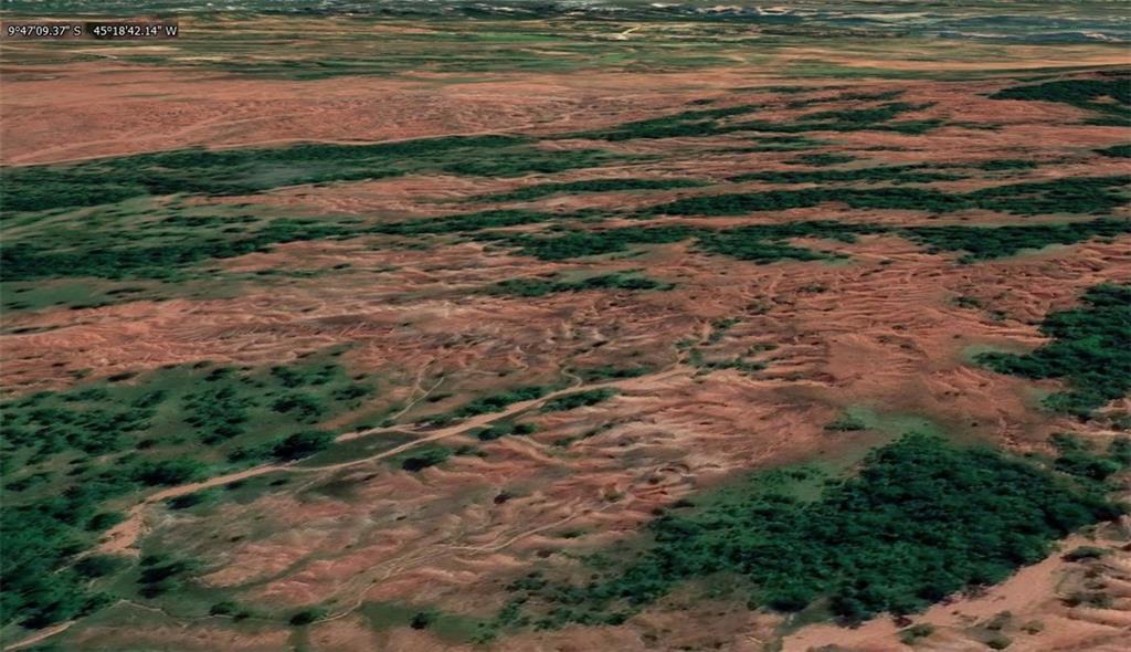2021 Monte Alegre Farm - Titanium -,