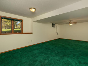 2074 Valley View Ln NE-028-026-Family Room-MLS_Size