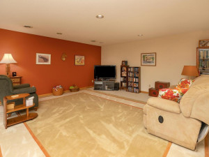 2905 7th Ave SW Austin MN-031-027-Family Room-MLS_Size