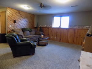 469 Sunnyview Drive, Rollingstone, MN 55969