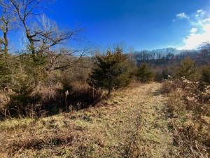 XXXX County 16 Road SE, Rochester, MN 55904