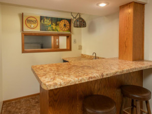 609 Parkway Ave S Lanesboro MN-025-026-Lower Level-MLS_Size