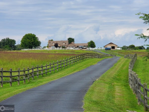 343 Box M Ranch Road,