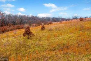 09-15279-photo-land-sullivan-county-missouri-0-acres-listing-number-15279-0-2020-12-13-213634jpeg