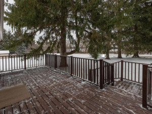 9305 80th Ave SE Chatfield MN-056-057-Deck-MLS_Size