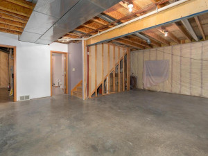 9305 80th Ave SE Chatfield MN-050-039-Lower Level-MLS_Size