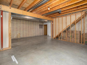 9305 80th Ave SE Chatfield MN-049-050-Lower Level-MLS_Size