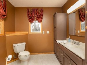 9305 80th Ave SE Chatfield MN-040-040-Bathroom-MLS_Size