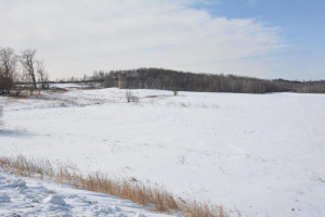 13 Acres County Road CC N, Spring Valley, WI
