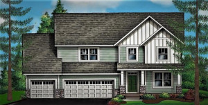 Image of other larger 2 story home under development