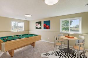 Many option in lower level family room design