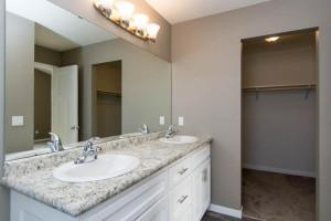 Master bath double sink, shower and walkin closet
