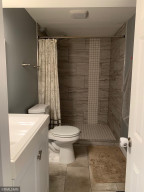Lower Level Bathroom with Tile shower surround.