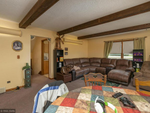 26379 540th Ave Austin MN 55912 USA-020-023-Family Room-MLS_Size
