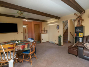 26379 540th Ave Austin MN 55912 USA-021-032-Family Room-MLS_Size