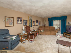 26379 540th Ave Austin MN 55912 USA-004-003-Living Room-MLS_Size