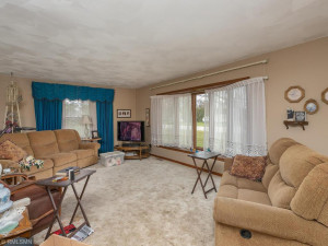 26379 540th Ave Austin MN 55912 USA-003-004-Living Room-MLS_Size