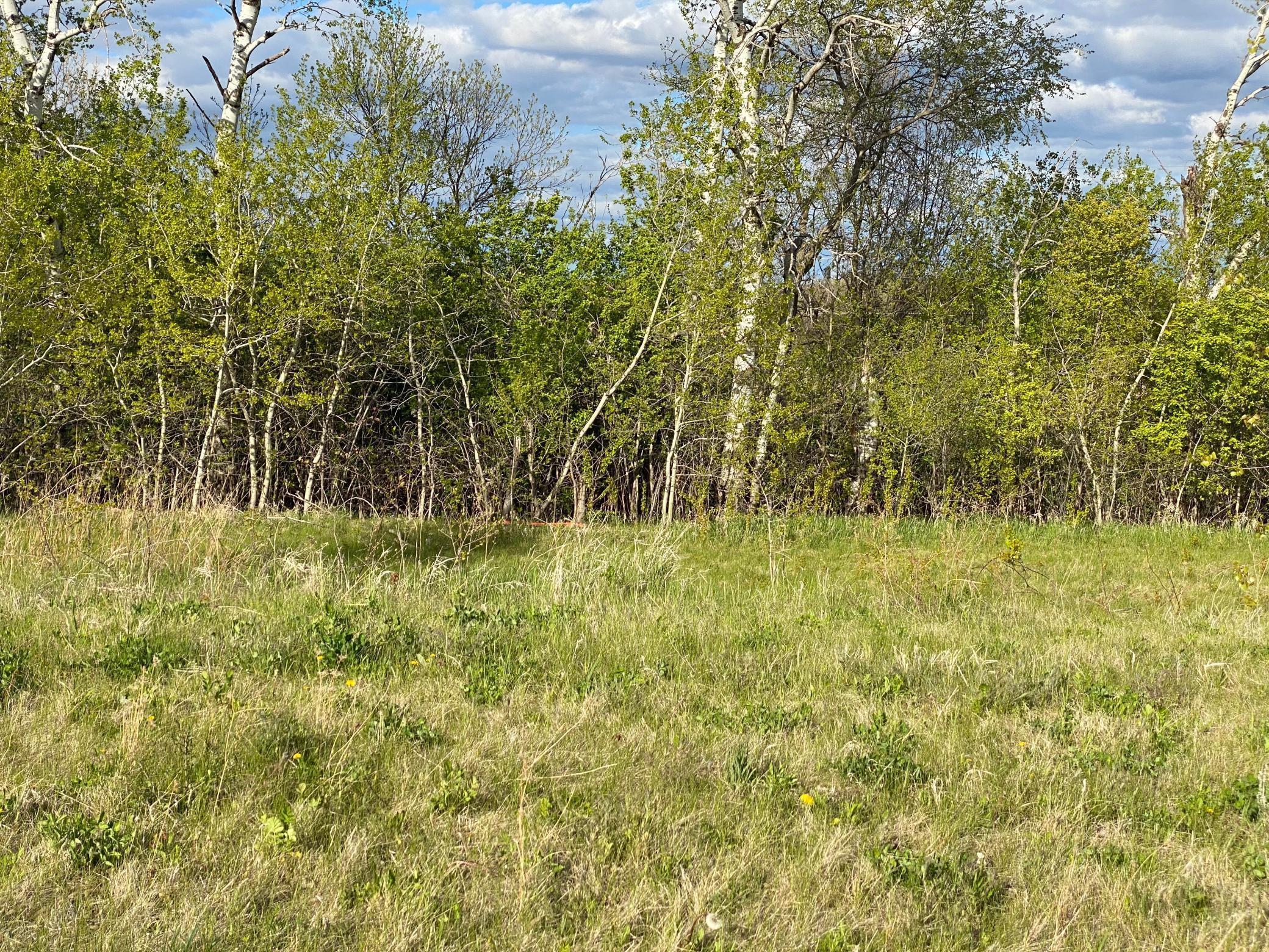 1424 Woodland Way, Lake City, MN 55041