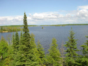 14 Brush Island NW, Angle Inlet, MN 56711