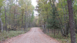 Lot 8 Blk Falling Leaf Trail, Park Rapids, MN 56470