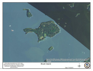 123 Brush Island, Angle Inlet, MN 56711