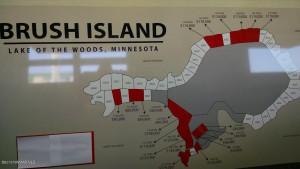 Brush Island, MN 56711