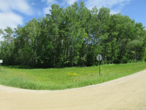 TBD 22nd Avenue, Baudette, MN 56623