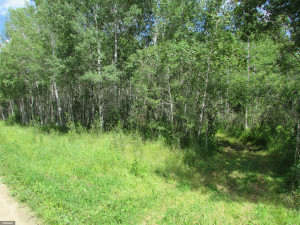 38th Ave Avenue, Baudette, MN 56623