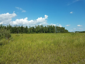 TBD Town Rd 112 Road, Baudette, MN 56623