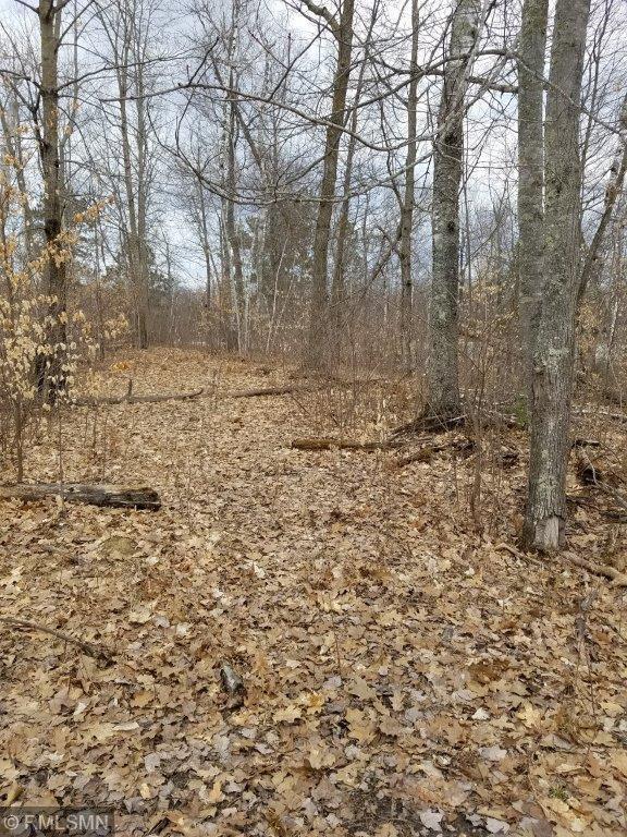 TBD Moose Trail, Laporte, MN 56461