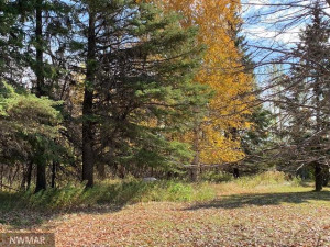 33745 160th Avenue NW, Newfolden, MN 56738