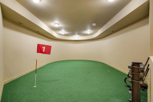 golf room ready for your simulator to play every course around the world!