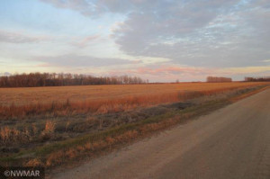 00 County Road 2 Road, Williams, MN 56686
