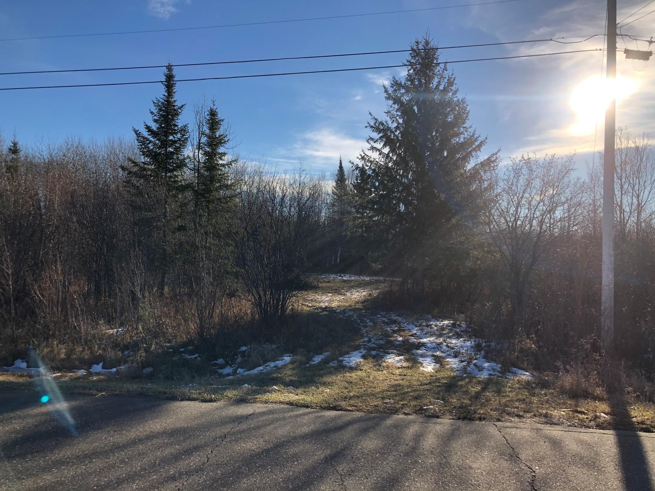 Lot B County Road 106, International Falls, MN 56649