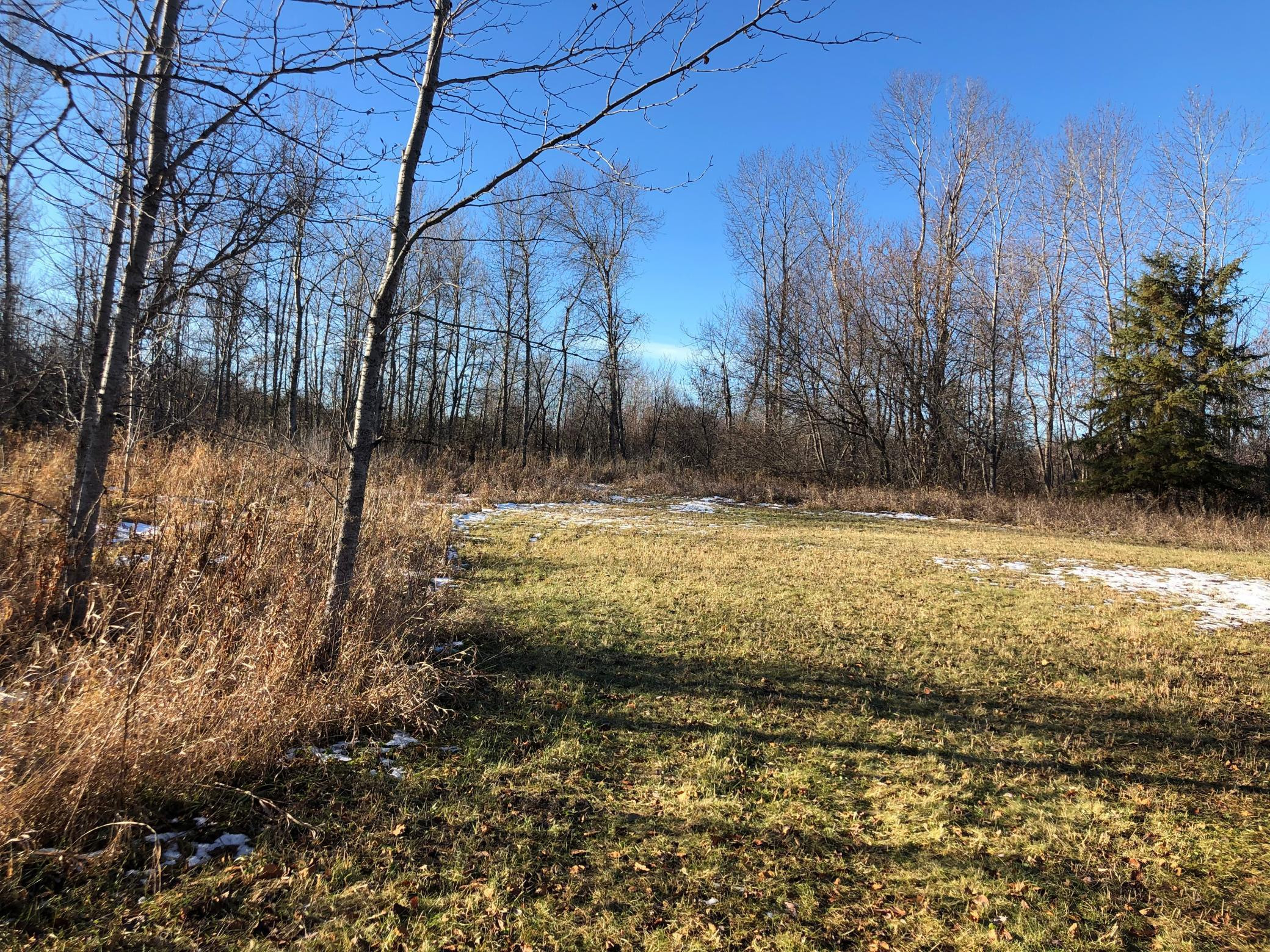 Lot D County Road 106, International Falls, MN 56649
