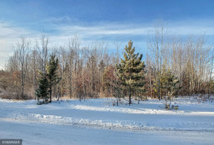TBD W Mayberry Drive, Cass Lake, MN 56633