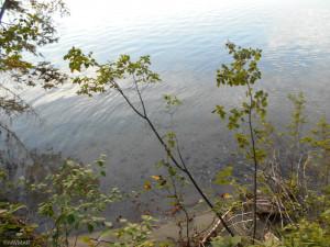 TBD Vahalla Lane, Cass Lake, MN 56633